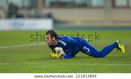 VIENNA, AUSTRIA - DEZEMBER 11 Heinz Lindner (#13 Austria) catches the ball at a UEFA Champions League game on Dezember 11, 2013 in Vienna, Austria. - stock photo