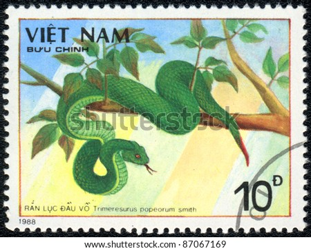 VIETNAM - CIRCA 1988: A stamp printed in VIETNAM  shows  a Trimeresurus popeorum smith, series , circa 1988 - stock photo