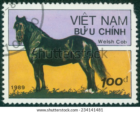 VIETNAM - CIRCA 1989: A stamp printed in VIETNAM shows a Welsh Cob horse, horse breed series , circa 1989 - stock photo