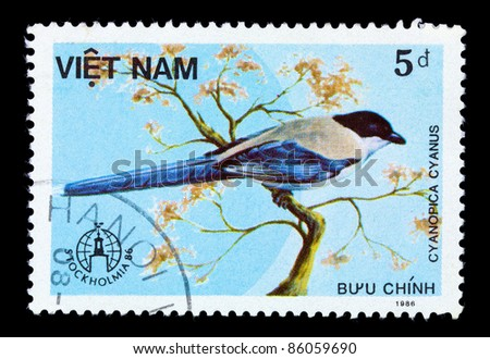 VIETNAM - CIRCA 1986: A stamp printed in Vietnam shows Cyanopica cyanus or azure-winged magpie, series devoted to the birds, circa 1986