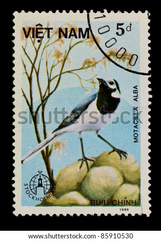 VIETNAM - CIRCA 1986: A stamp printed in Vietnam shows Motacilla alba or white wagtail, series devoted to the birds, circa 1986