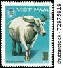 VIETNAM - CIRCA 1979: A stamp printed in Vietnam shows  White water buffalo, series  Domestic  Animals, circa 1979 - stock photo
