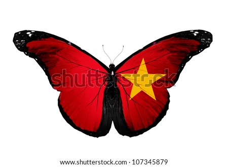 Vietnamese flag butterfly, isolated on white background - stock photo