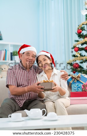 Vietnamese senior couple in Santa Claus hats sitting on the sofa