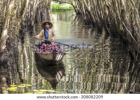 Vietnamese woman rowing boat loaded with waterlily flower on the marsh - stock photo