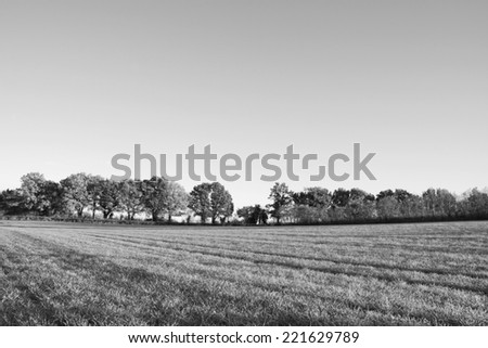 View across a farm field edged by deciduous trees in autumn - monochrome processing - stock photo