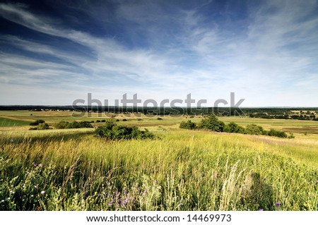 View across cornfield agricultural landscape - stock photo