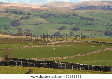 View across farmland in the Yorkshire Dales National Park