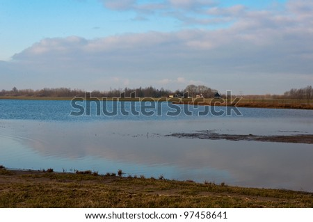 View at a part of the Dutch National Park De Biesbosch in winter colors. - stock photo