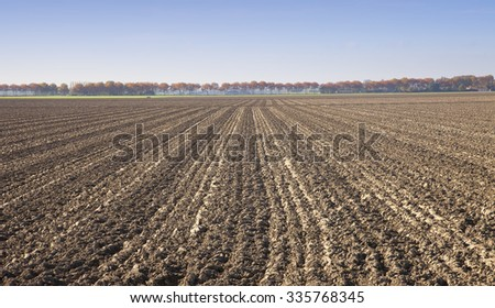 View at agricultural field in The Netherlands - stock photo