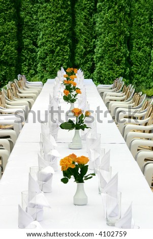 View at near symmetrical table ready to start party among green