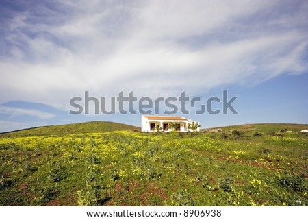 View at the countryside from Portugal with flowering fields and a typical portuguese house