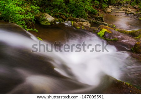View down a small waterfall on Hogcamp Branch in Shenandoah National Park, Virginia. - stock photo
