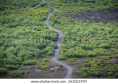 View from above on a dirt road running among trees and lava fields, near Myvatn lake, North Iceland - stock photo