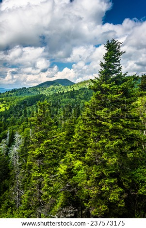 View from Devils Courthouse, near the Blue Ridge Parkway in North Carolina. - stock photo