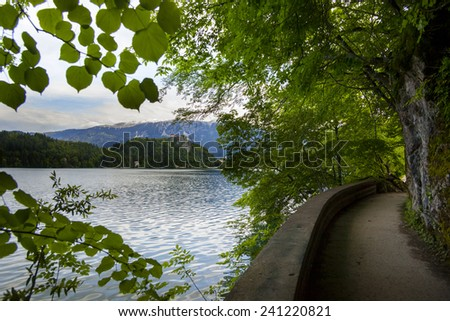 View from Lake Bled in Slovenian Alps - stock photo