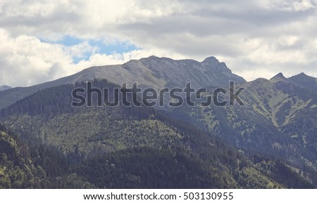 View from Rusinowa glade on the Tatras
