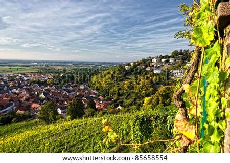 view from Strahlenburg Heidelberg - stock photo
