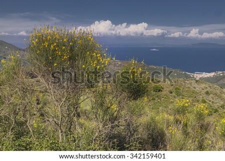 View from the mountain Cima del Monte near Rio nell Elba, Elba, Tuscany, Italy, Europe - stock photo