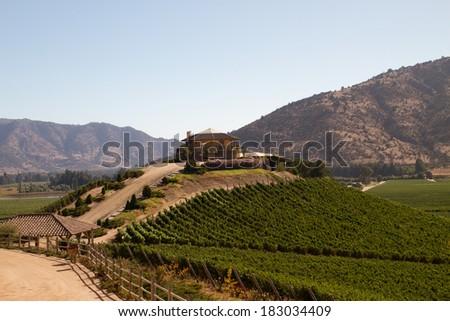 View from the Santa Cruz vineyard in Santa Cruz valley Chile - stock photo