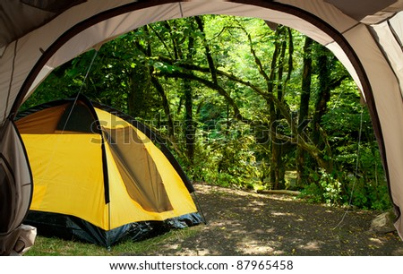 View from the tent on the picturesque forest - stock photo