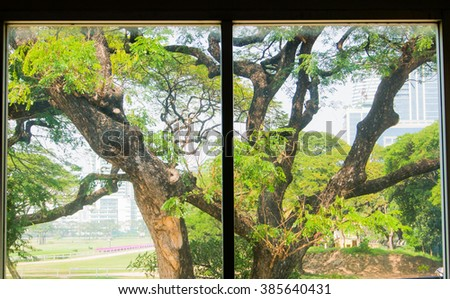 View from the window in the golf club. Soft-focused, focus on the outside trees - stock photo