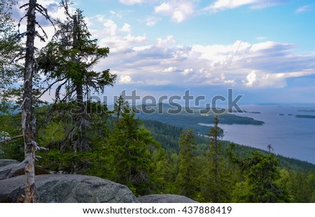 View from Ukko Koli over Lake Pielinen and Koli national park .In the foreground is big spruce. - stock photo