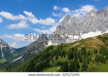 View Idyllic, beauty closeup Alpine rocks, fresh clear blue sky, rich green forest, spruce, grass, trees. summer day. trekking in National park Dachstein, Austria, Europe. Austrian bloom land. Poster - stock photo