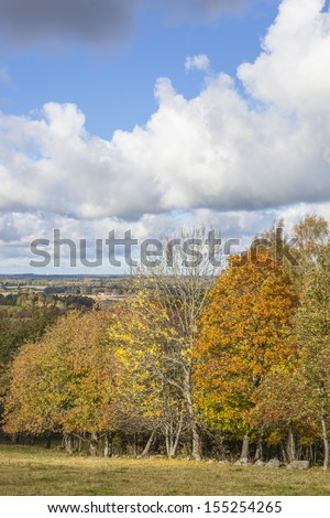 View in autumn landscape - stock photo