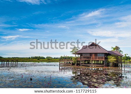 view landscape of  wooden home countryside in blue sky at lotus lagoon, Phatthalung, Thailand - stock photo