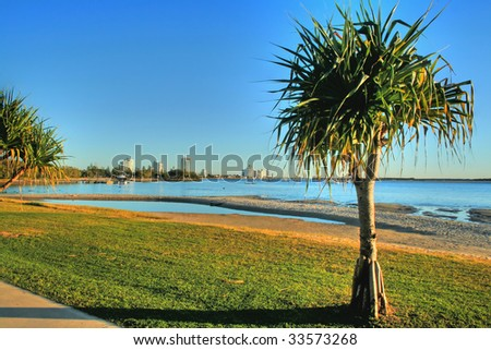 View looking to Labrador on the Gold Coast Australia with pandanus tree. - stock photo
