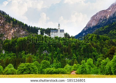 View Neuschwanstein castle in mountains and forests - stock photo