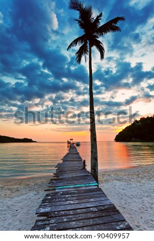 view of a beach with palm and pier extending into the sea at sunset - stock photo