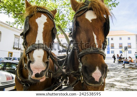 View of a double horse carriage parked on a city. - stock photo