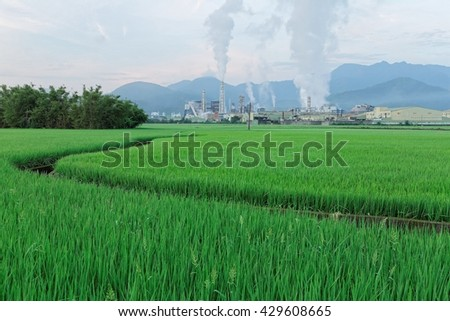 View of a factory in the middle of a green rice field with pipes emitting air pollutants on a silent morning, a serious environmental issue - stock photo