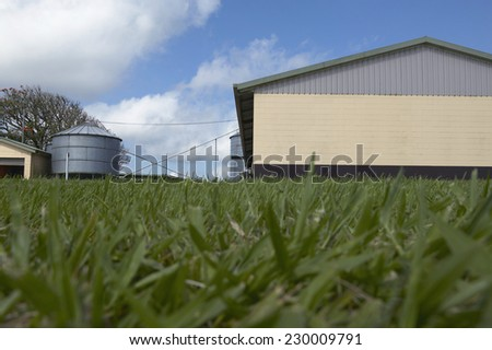View of a farm with grass in foreground - stock photo