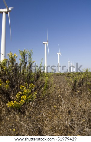 View of a field of giant windmills. - stock photo