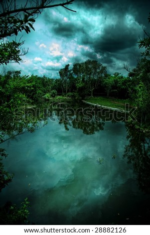 view of a forest reflected in water - stock photo