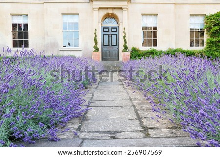 View of a Garden Path Lined by Lavender Flowers Leading to a Beautiful Georgian Era English Town House Built Circa 1750 - stock photo