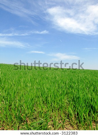 View of a green hill and blue sky with white clouds on a sunny day