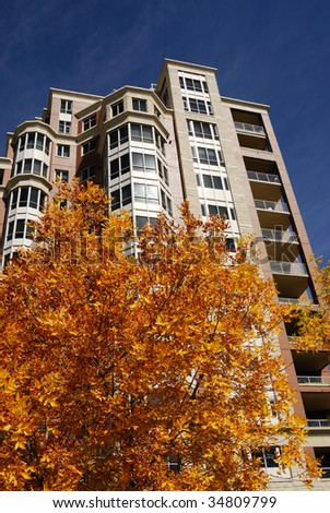View of a highrise apartment with autumn leaves under the blue sky, downtown of calgary, alberta, canada - stock photo