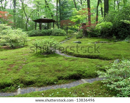 View of a Japanese Moss Garden