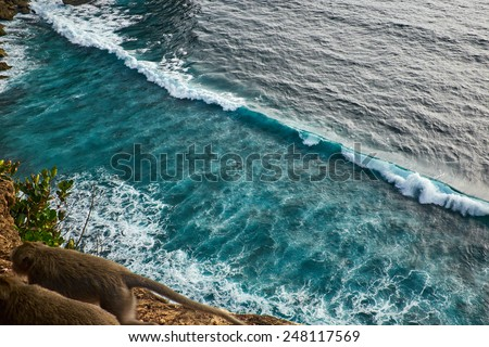 view of a monkey cliff in Bali Indonesia - stock photo