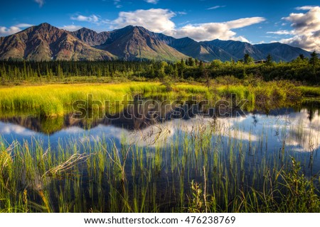 View of a mountain range in Denali National Park, Alaska with a reflection in a close lake on a bright summer day
