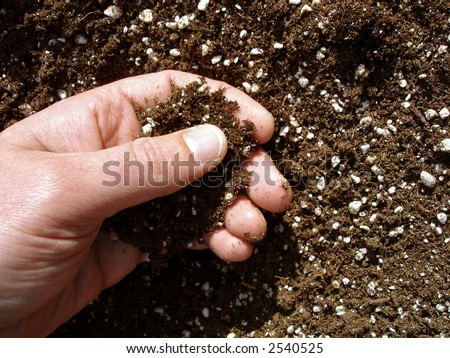 View of a person's hand checking the soil before planting. - stock photo