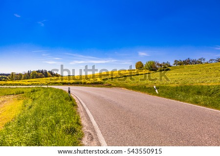 view of a road in oberschwaben wiht rapeseedfield