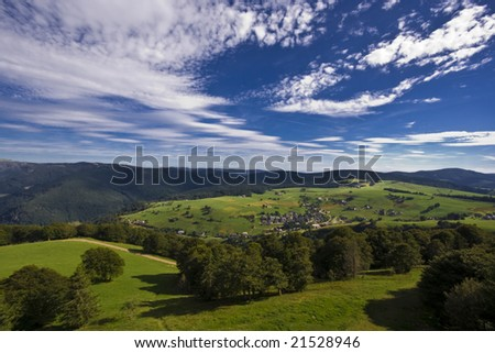 View of a small village in the Black Forrest - stock photo