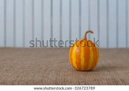 View of a tiger striped decorative pumpkin on a rustic white wooden background. Horizontal format with copy space - stock photo