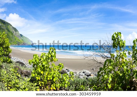 View of a tropical beach from the cover of vibrant, green foliage - stock photo
