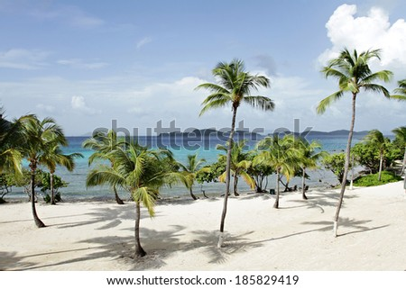View of a tropical ocean from white sand beach through the palm trees - stock photo